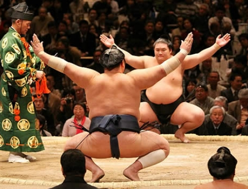 One for the bucket list – see a Sumo Tournament in Japan