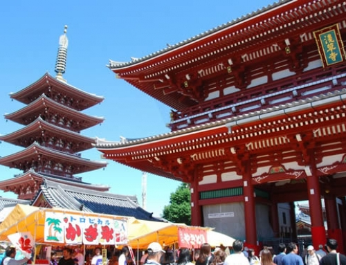 Tokyo City Tour with Private Guide