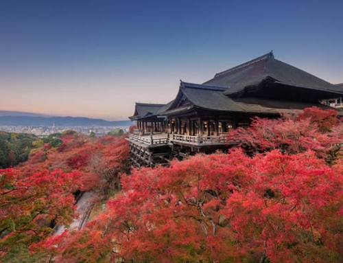Autumn Colours Tour of Kyushu