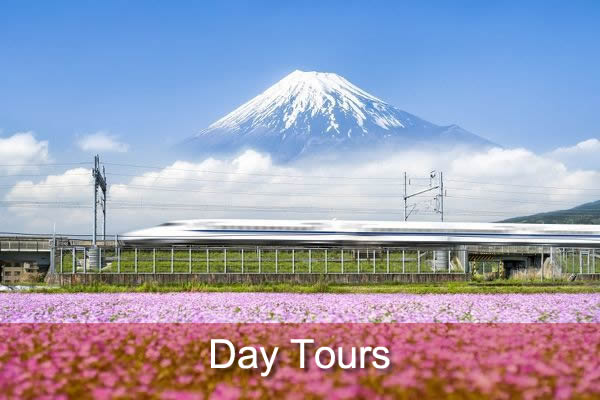 Japan Day Tours