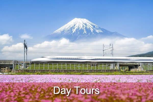 Japan Day Tours