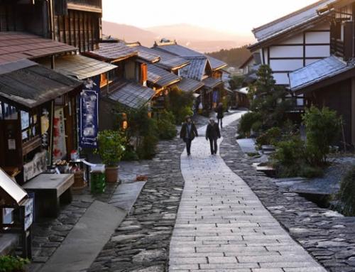 Back to Edo (8 Days)