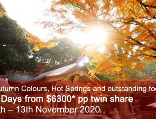 Kyushu Autumn Colours Tour 2020
