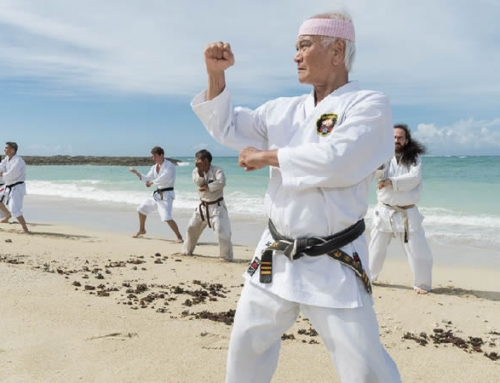Okinawan Karate Day Lesson – 1 Day Tour