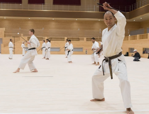Karate Legends of Okinawa tour camp – 2 Nights