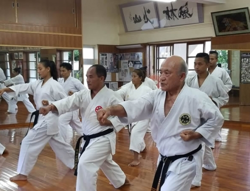 Karate Legends of Okinawa tour camp – 5 Nights