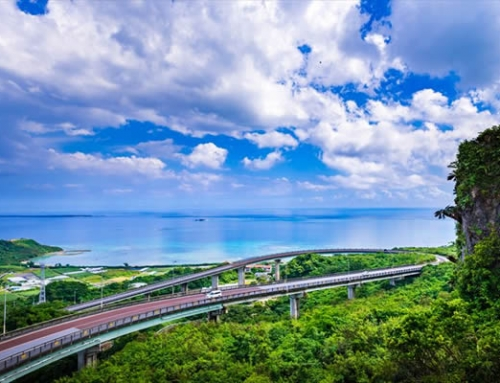 Around Okinawa | 4 Days Self-Drive