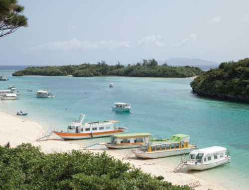Karate Legends of Okinawa tour with Yaeyama Island escape | 13 Nights