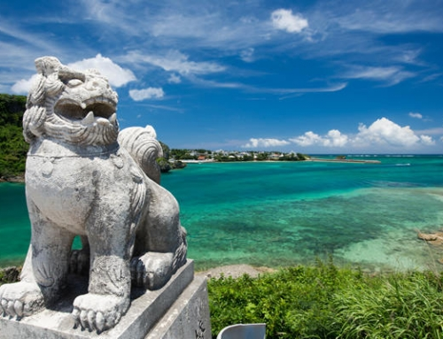 Experience Okinawa Karate package with Zamami Island stay | 5 Nights