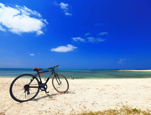 Cycling Okinawa – morning cycle package