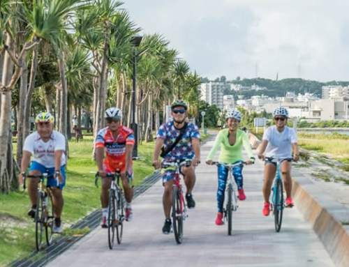 Discover Okinawa Cycling Package