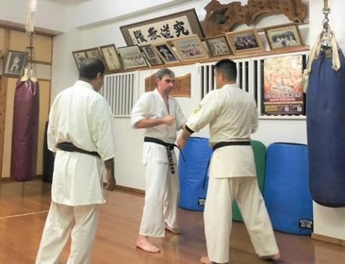 Staff Review – Karate in Okinawa