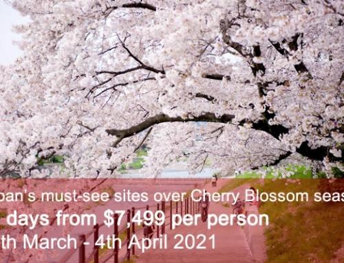 Classic Cherry Blossom Tour 2021