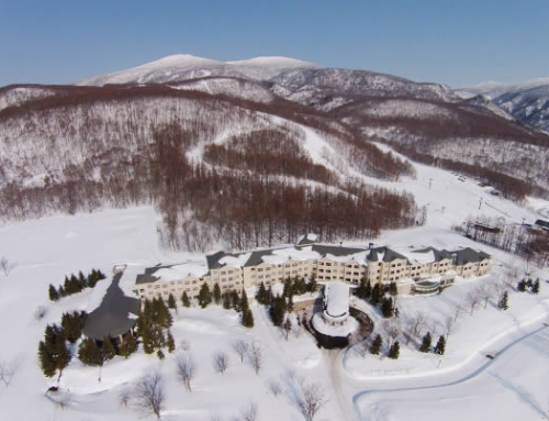 Ski Aizu in March – last minute special from $520pp