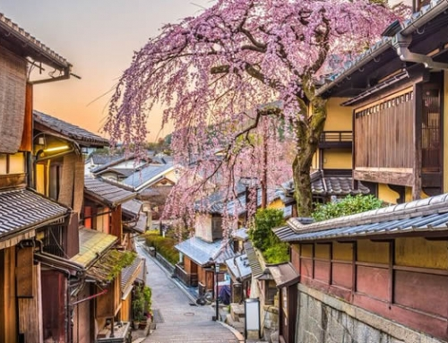 Best Books to Read if You're Dreaming of Japan