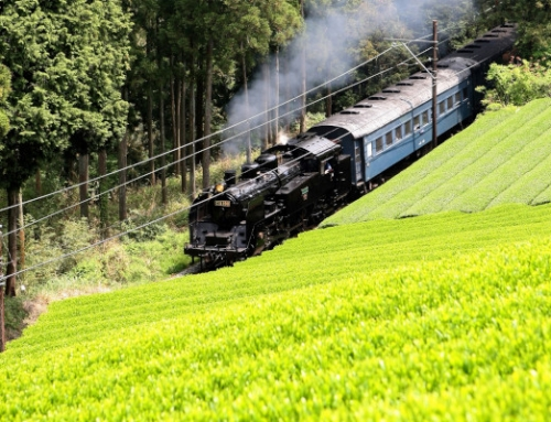 Rail In Focus July – Japan's Oigawa Railway Line – Scenic tracks for train fans and tourists