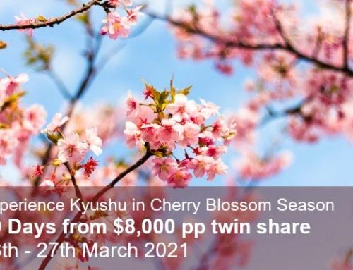Cherry Blossom Trail & Last Samurai Tour of Kyushu 2021