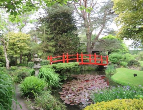 The Red Bridge – Gardening by Kate Heffernan