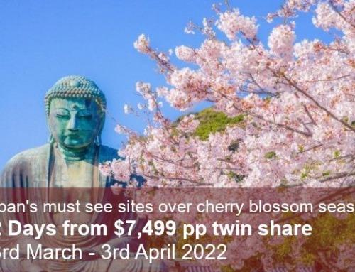 Classic Cherry Blossom Tour 2022