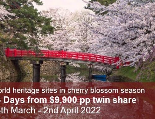 World Heritage & Kumano Kodo Cherry Blossom Tour 2022