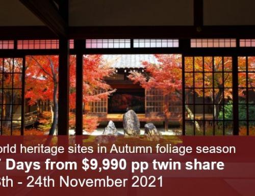 World Heritage & Kumano Kodo Autumn Tour 2021