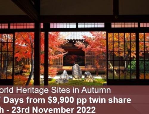 World Heritage & Kumano Kodo Autumn Tour 2022